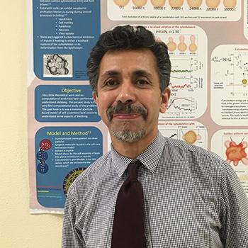 Dr. Mohamed Laradji