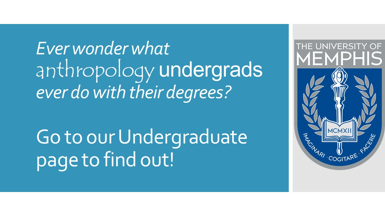What can you do with an Undergraduate degree in Anthropology?