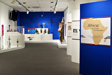 Curator-Visual Arts of Africa