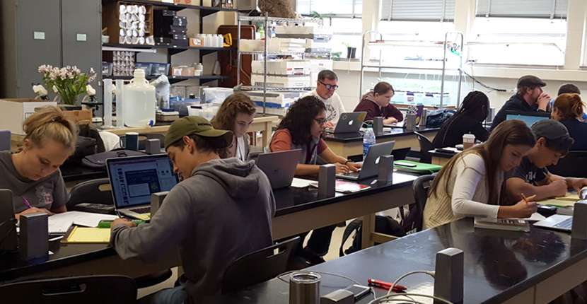 Working in groups to quantify genetic effects in a wild population of butterflies. Find out more about the Graduate Program.