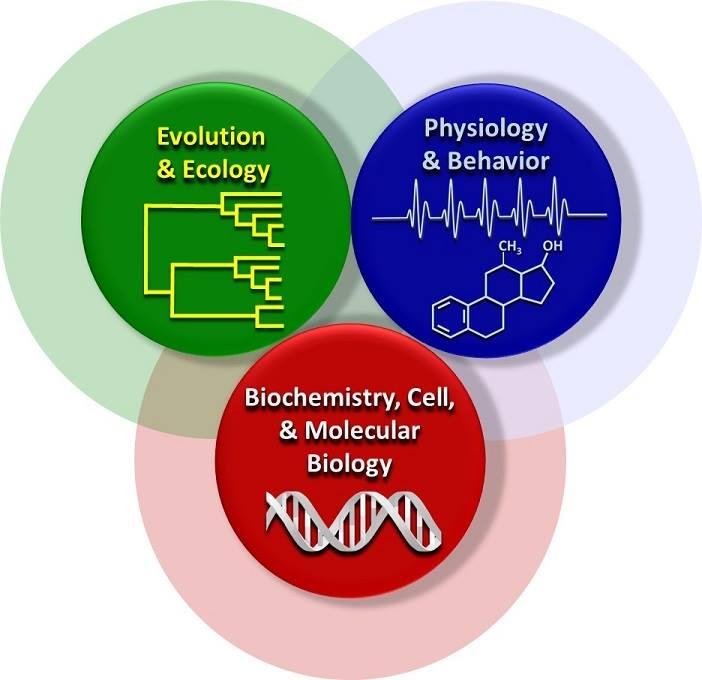 Evolution & Ecology, Physiology and Behavior, Biochemistry, Cell & Molecular Biology