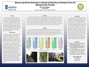 Measuring Clonal Diversity in Stands of Bamboo at Shelby Farms for Memphis Zoo Pandas