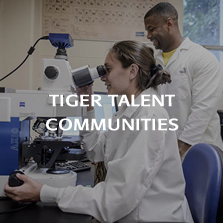 TigerTalent Communities