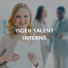 TigerTalent Internships