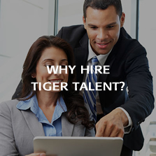 Why Hire Tiger Talent