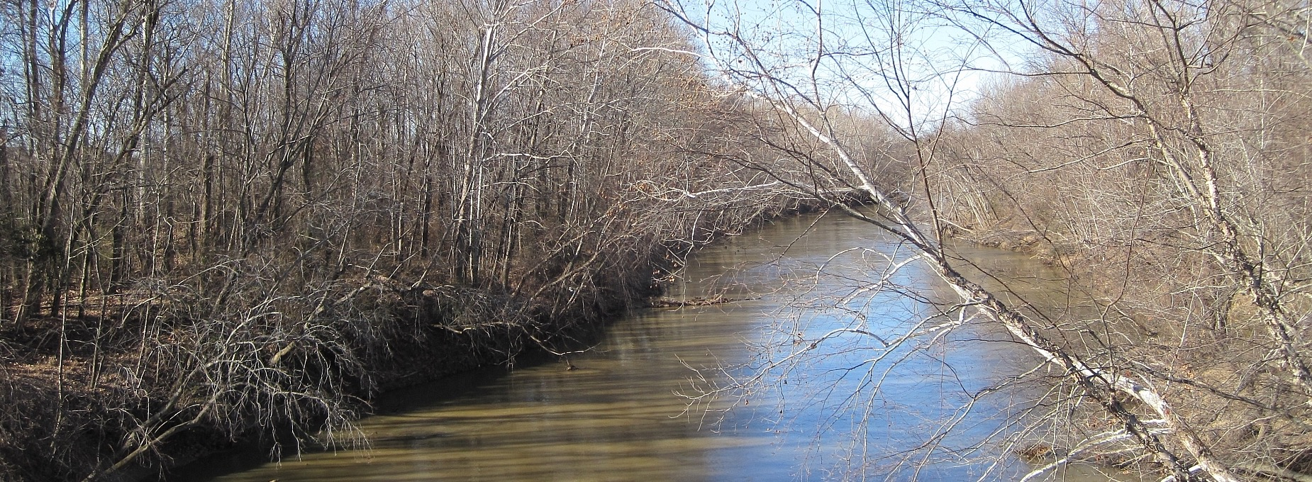 Shelby County Water Survey