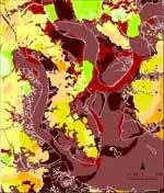 Charleston Scenario Liquefaction Hazard Map