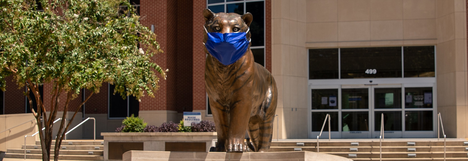 bronze tiger statue wearing blue face mask