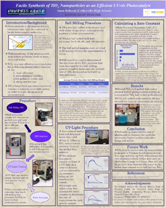 Anna Raheem poster submitted summer 2013