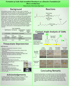 Nikisha Parekh poster submitted summer 2013