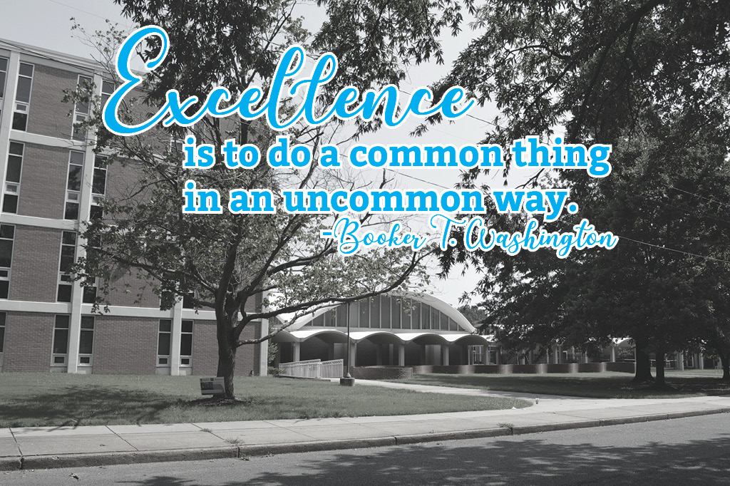 Excellence is to do a common thing in an uncommon way - Booker T Washington