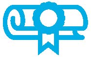 Award certificate icon