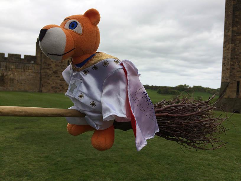 HP Pouncer on broom