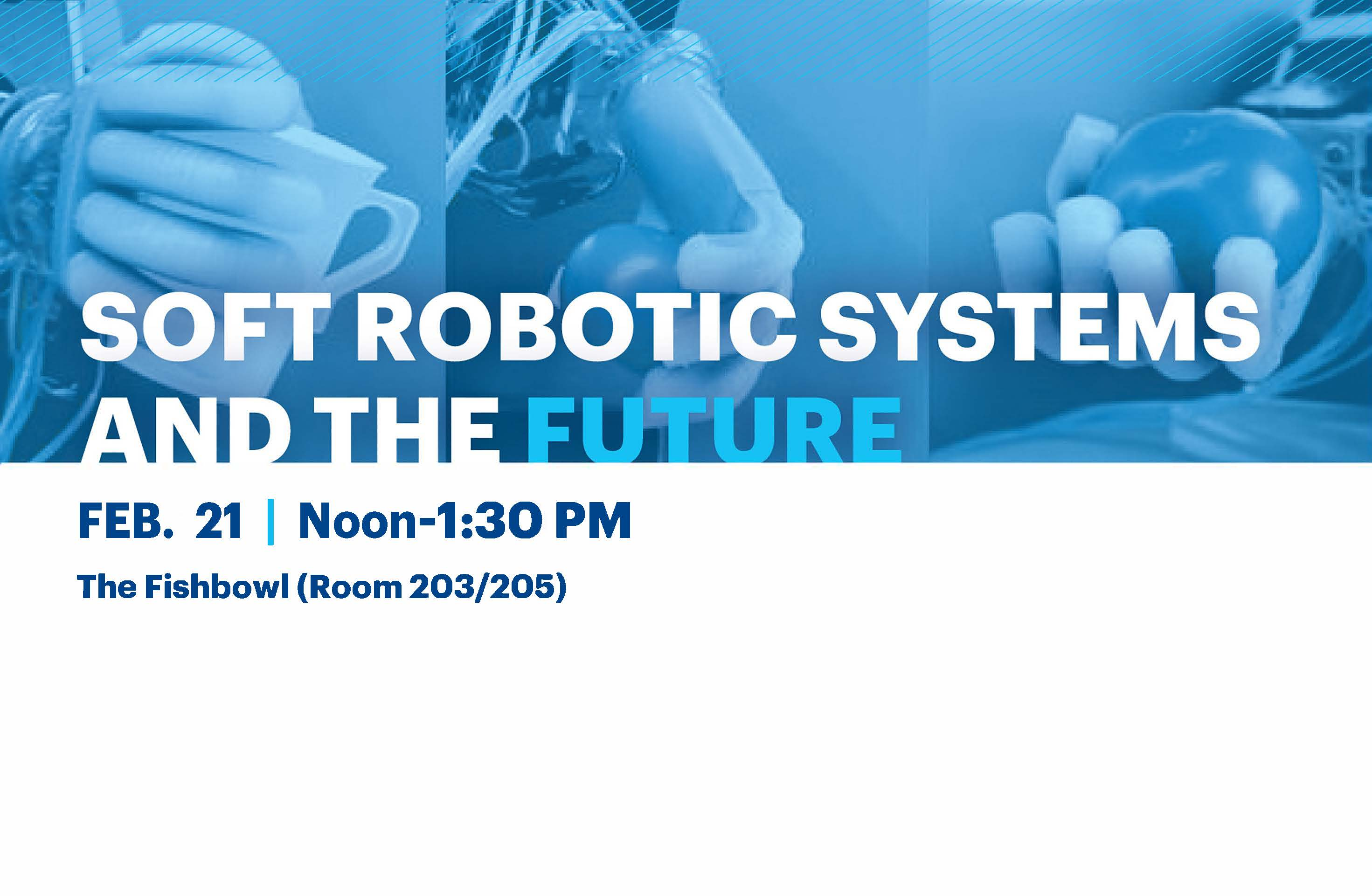 Soft Robotic Systems and The Future
