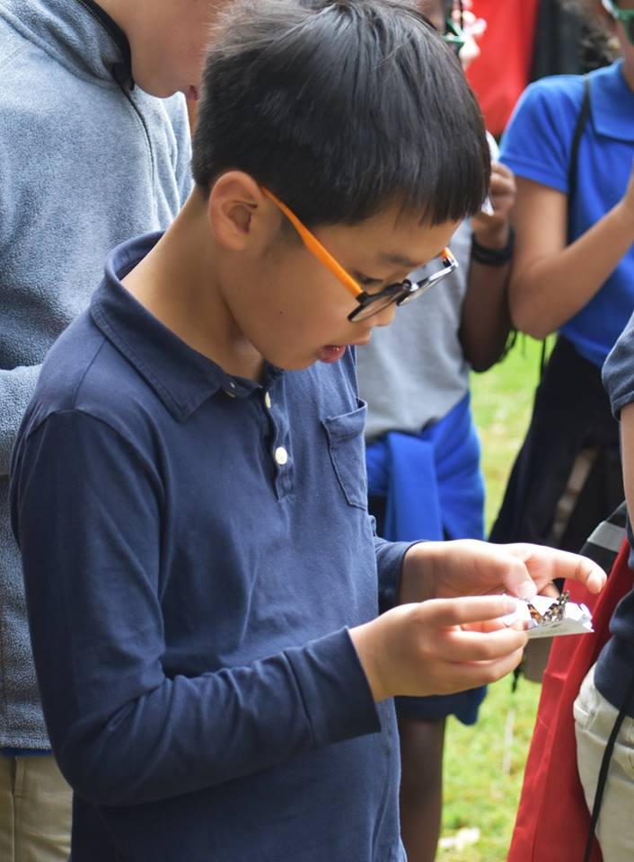 Campus School student examines butterfly