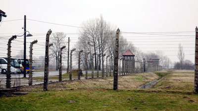Auschwitz fences