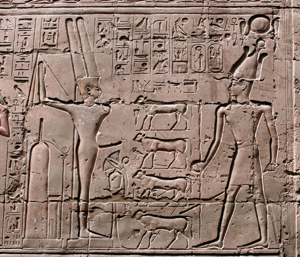 Ramesses II driving calves