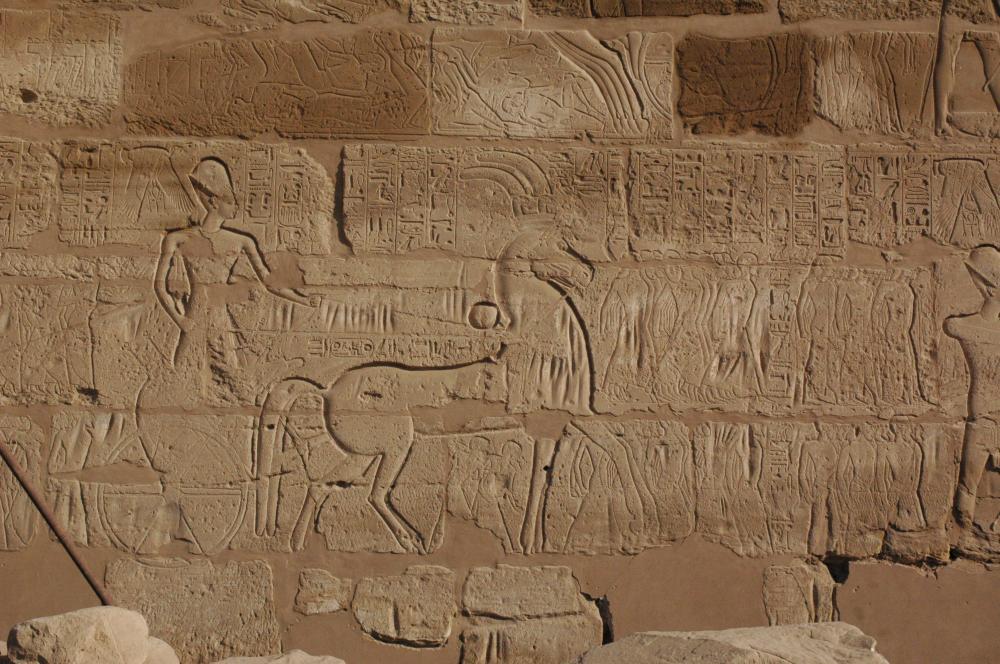 Ramesses II prisoners