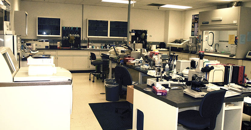 The Histology Laboratory at the Integrated Microscopy Center provides quality, timely and need-based histology service for soft and mineralized animal and plant samples.