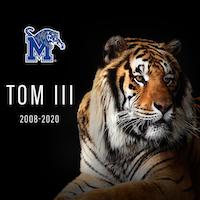 Tom III