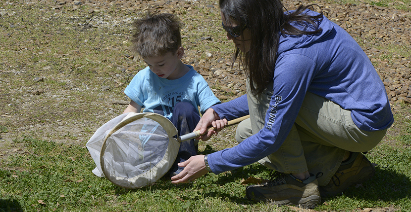 Dr. Jennifer Mandel and her son Jeremy collect flying insects for inclusion in the BioBlitz database