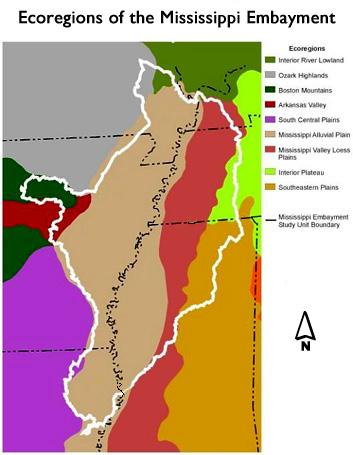 Ecoregions