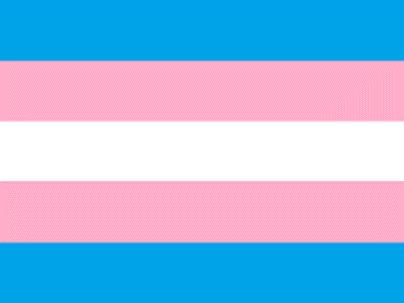 Transgender Community Flag