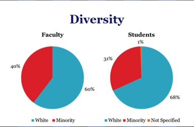 LCON's Diversity Chart