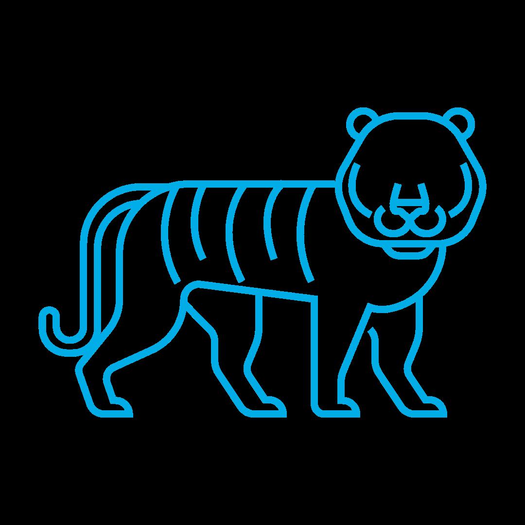 TigerZone