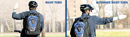 """Cyclist making """"right turn"""" and """"alternate right turn"""" signals"""